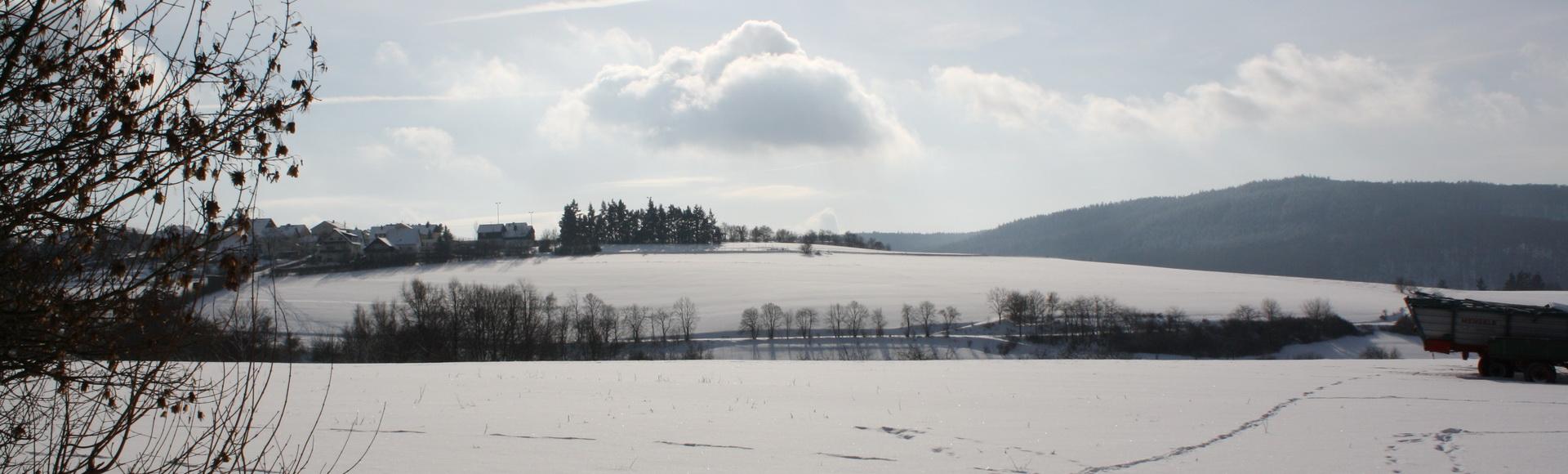 Presberg im Rheingau